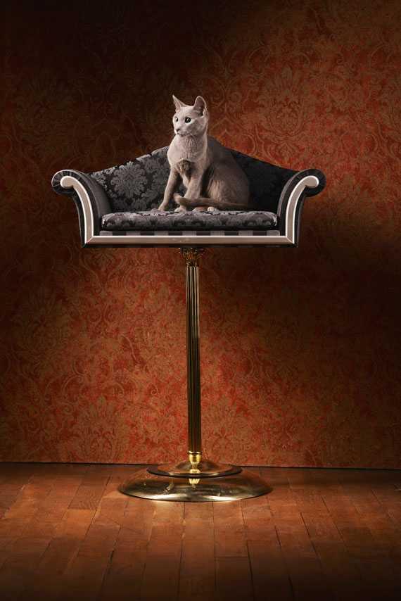 ペット用の贅沢なベッド